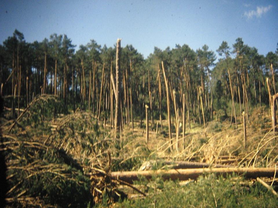 tornado 1999 105