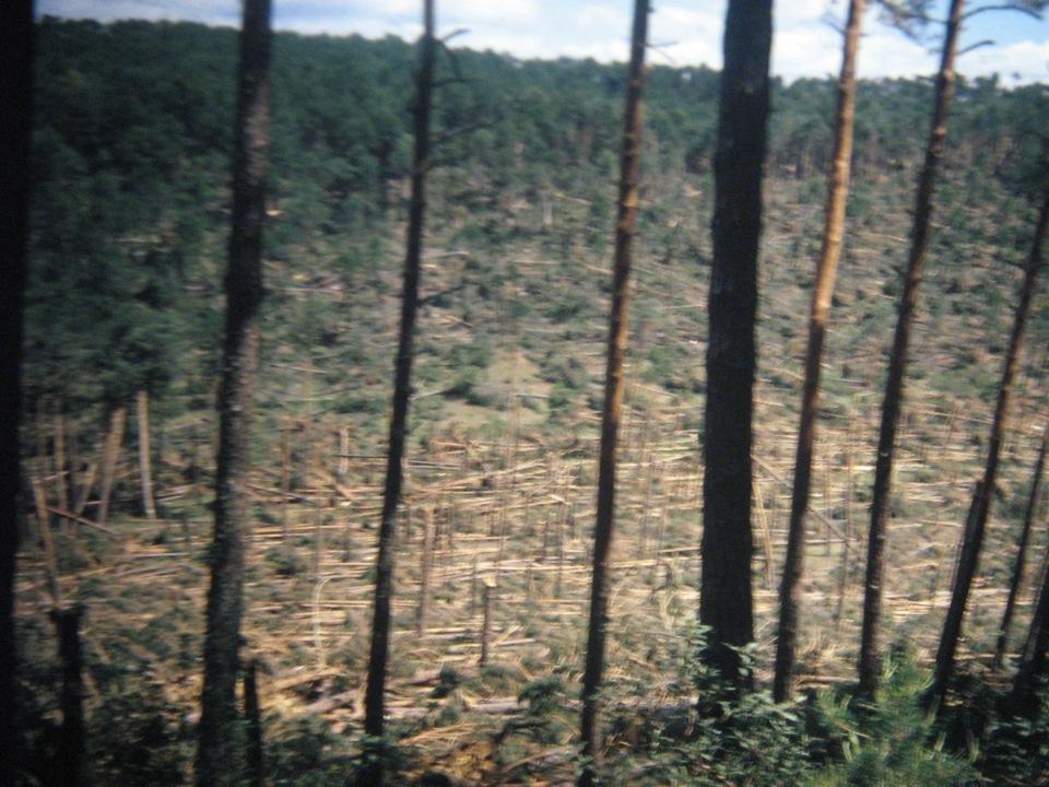 tornado 1999 106