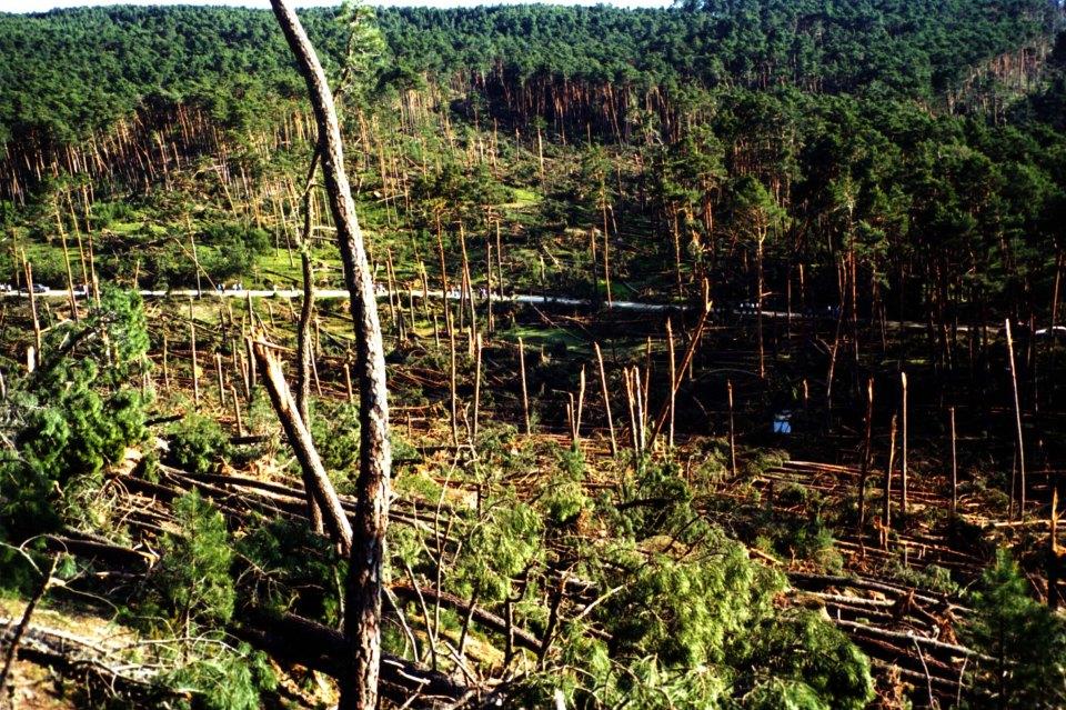 Tornado F3 Pinares Soria, 1 de junio 99, 5