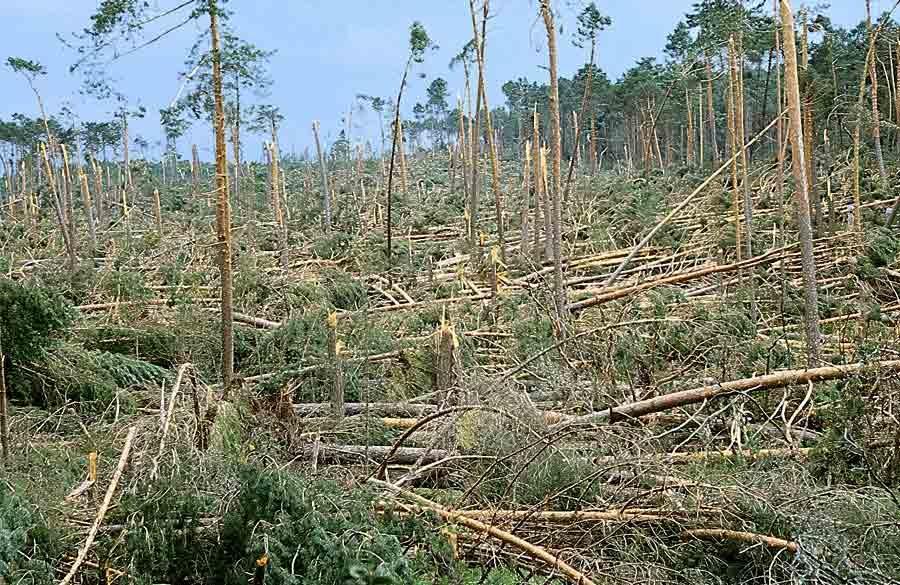 Tornado F3 Pinares Soria, 1 junio 99, 2