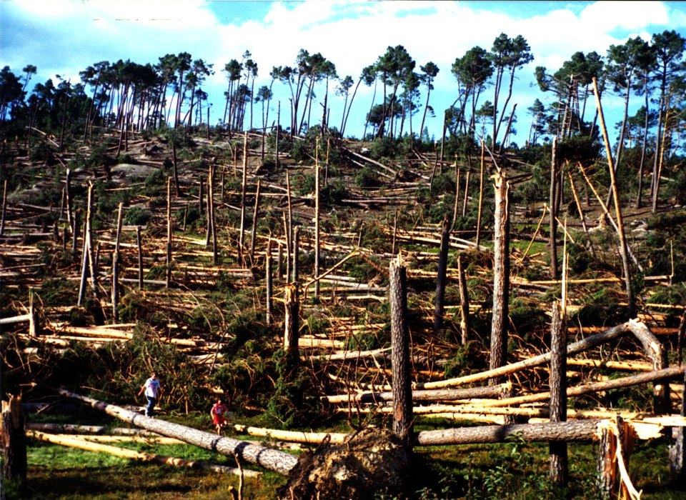 Tornado F3 Pinares Soria, 1 junio de 99, 4